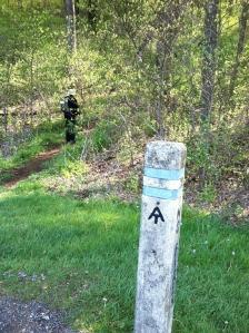 Swift Run Trail